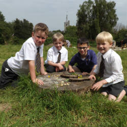 Outdoor learning inspire Year 2