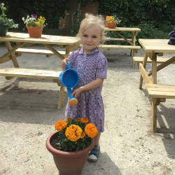 A Forest School session for Nursery