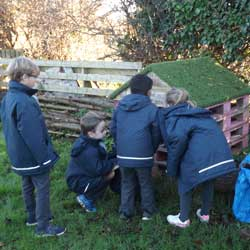 A glimpse into the life of children in Year 2