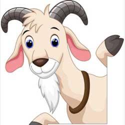 Goat Friday? – No kidding!
