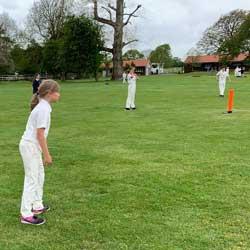 Cricket Match Reports – Summer Term